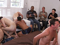 Divorced gay males group and gays group porno at Sausage Party