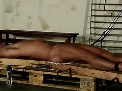 Gay bears blowing twinks galleries and homemade gay anal masturbation - Boy Napped!